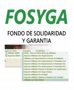 Consulta de afiliados FOSYGA